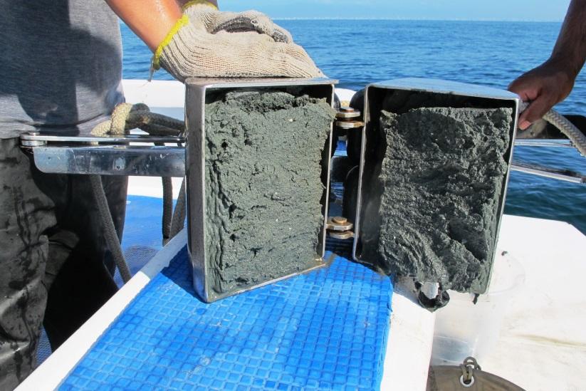 Monitoramento da Qualidade do Sedimento